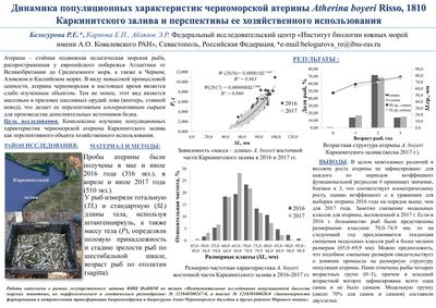 Poster BelogurovaRE