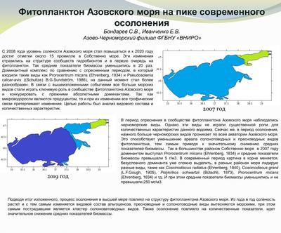 Poster BondarevSV