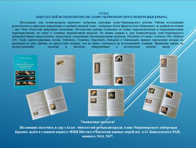 Poster KopiyVG_atlas