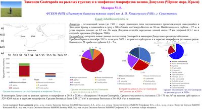 Poster MakarovMV