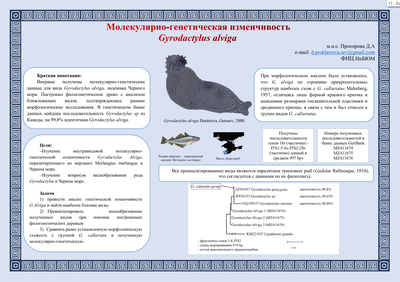 Poster ProkhorovaDA