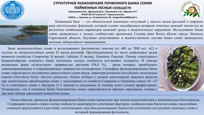 Poster TorgashkovaON