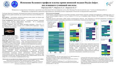 Poster YurchenkoVV